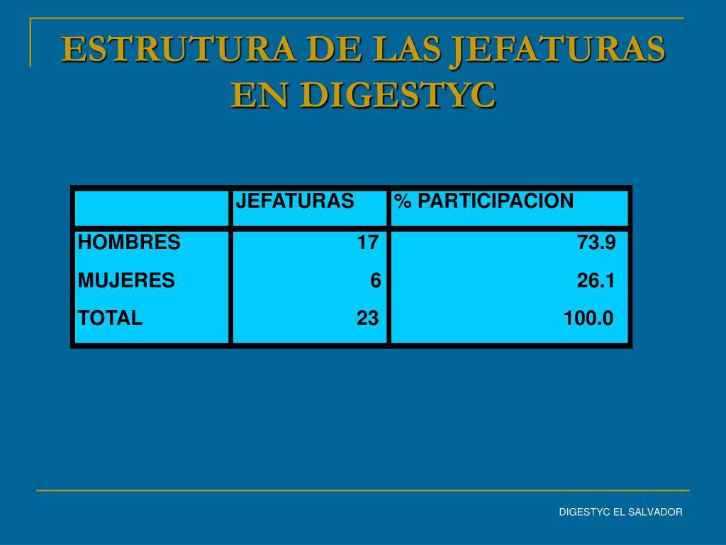 ESTRUTURA DE LAS JEFATURAS EN DIGESTYC