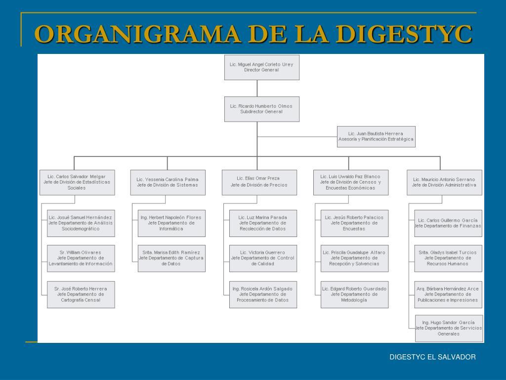 ORGANIGRAMA DE LA DIGESTYC