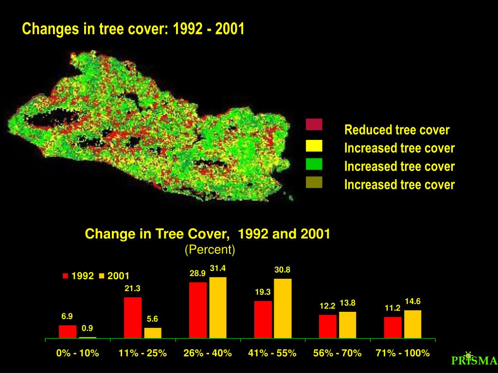 Reduced tree cover