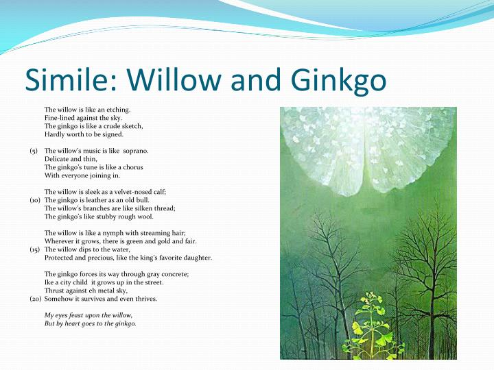 """""""simile willow and ginkgo"""" Poem willow and ginkgo by eve merriam i need to analyze this poem but i have no clue what the meaning of this poem is and we need to show only 2."""