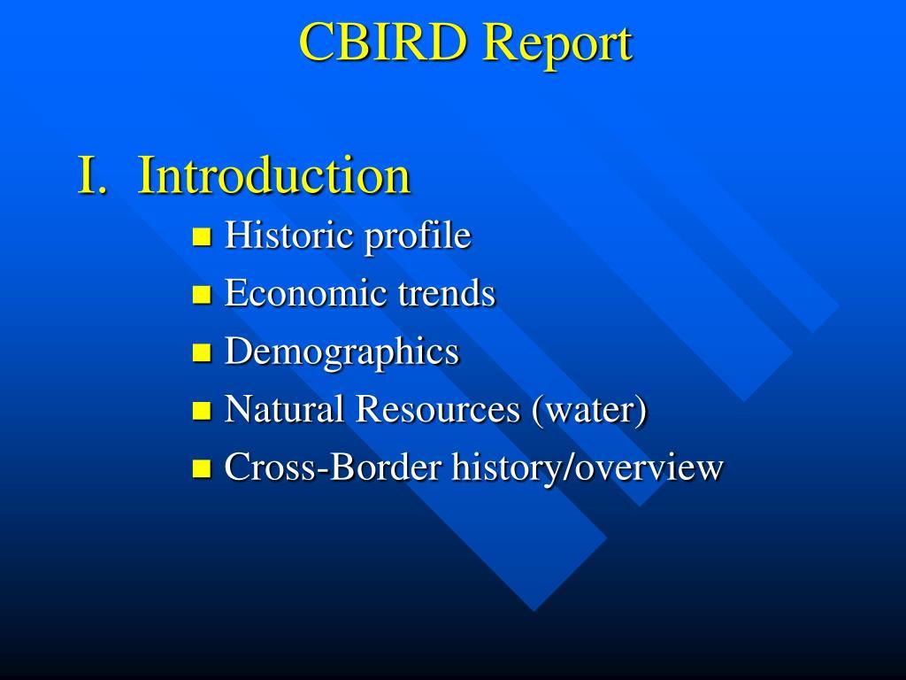 CBIRD Report