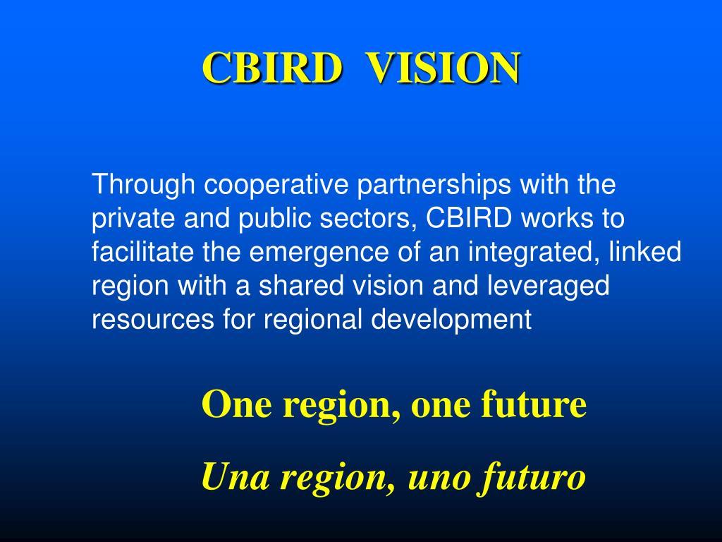 CBIRD  VISION