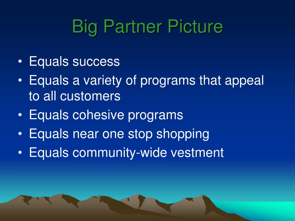 Big Partner Picture