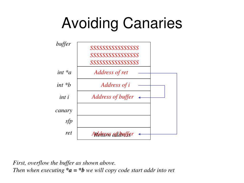 Avoiding Canaries
