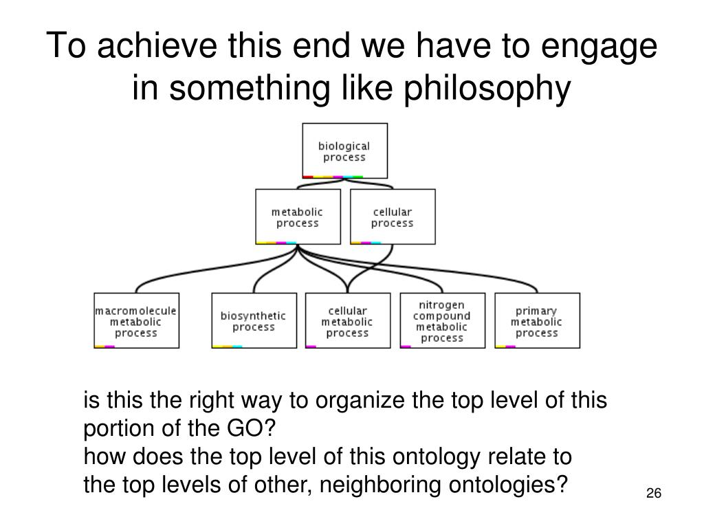 To achieve this end we have to engage in something like philosophy