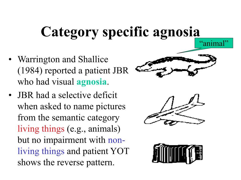 Category specific agnosia