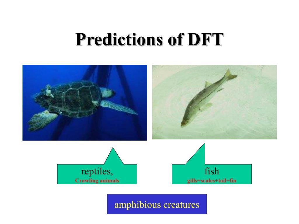 Predictions of DFT