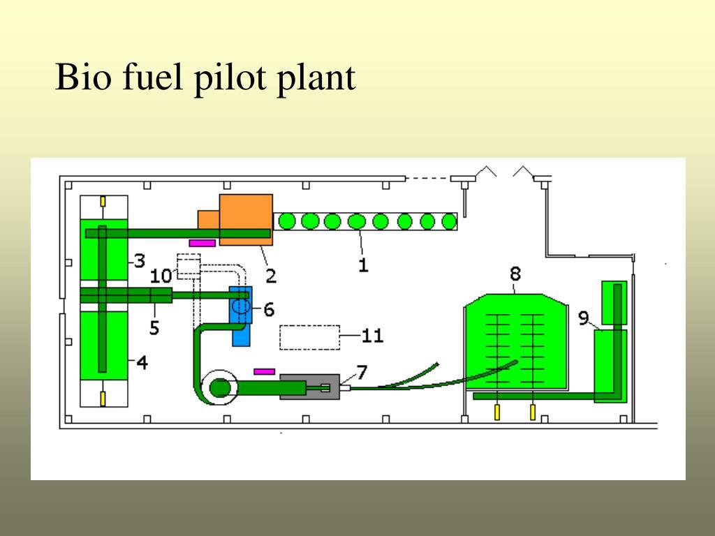 Bio fuel pilot plant