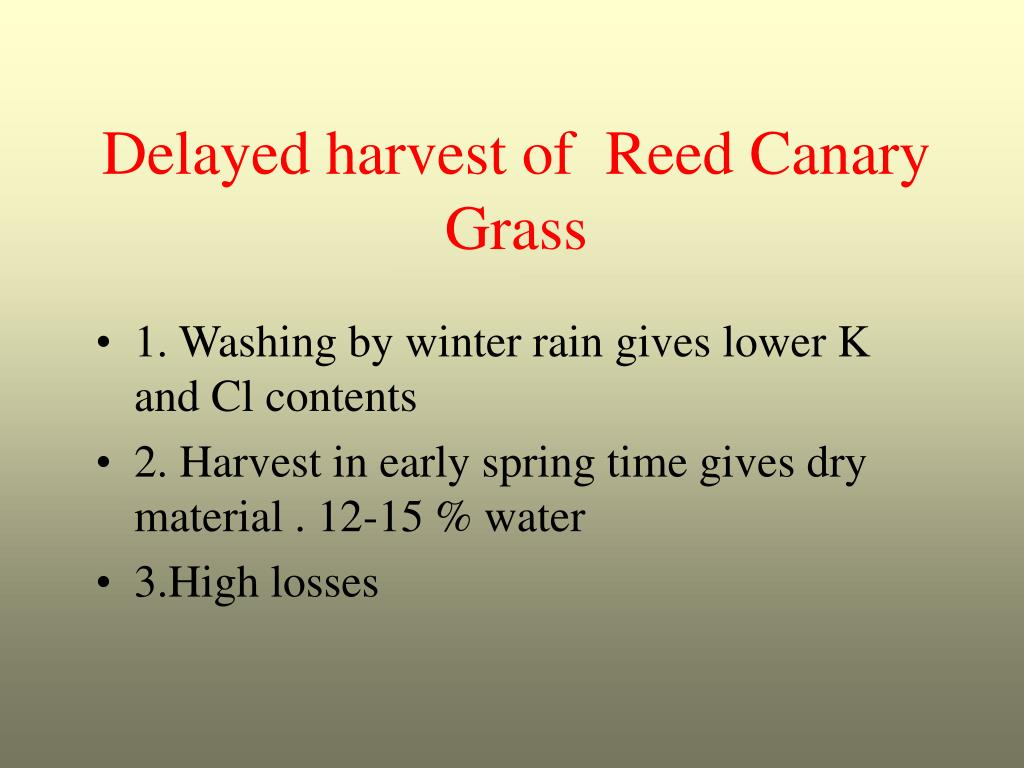 Delayed harvest of  Reed Canary Grass
