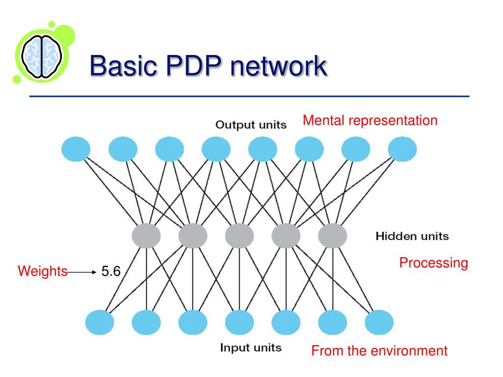 Basic PDP network