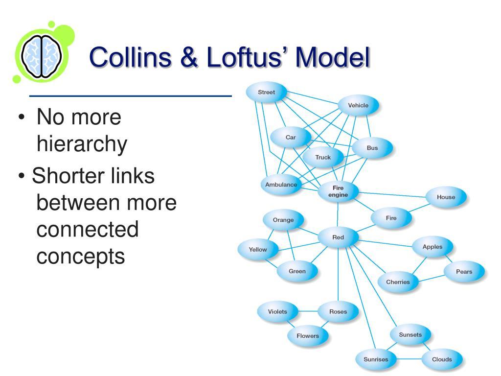 Collins & Loftus' Model