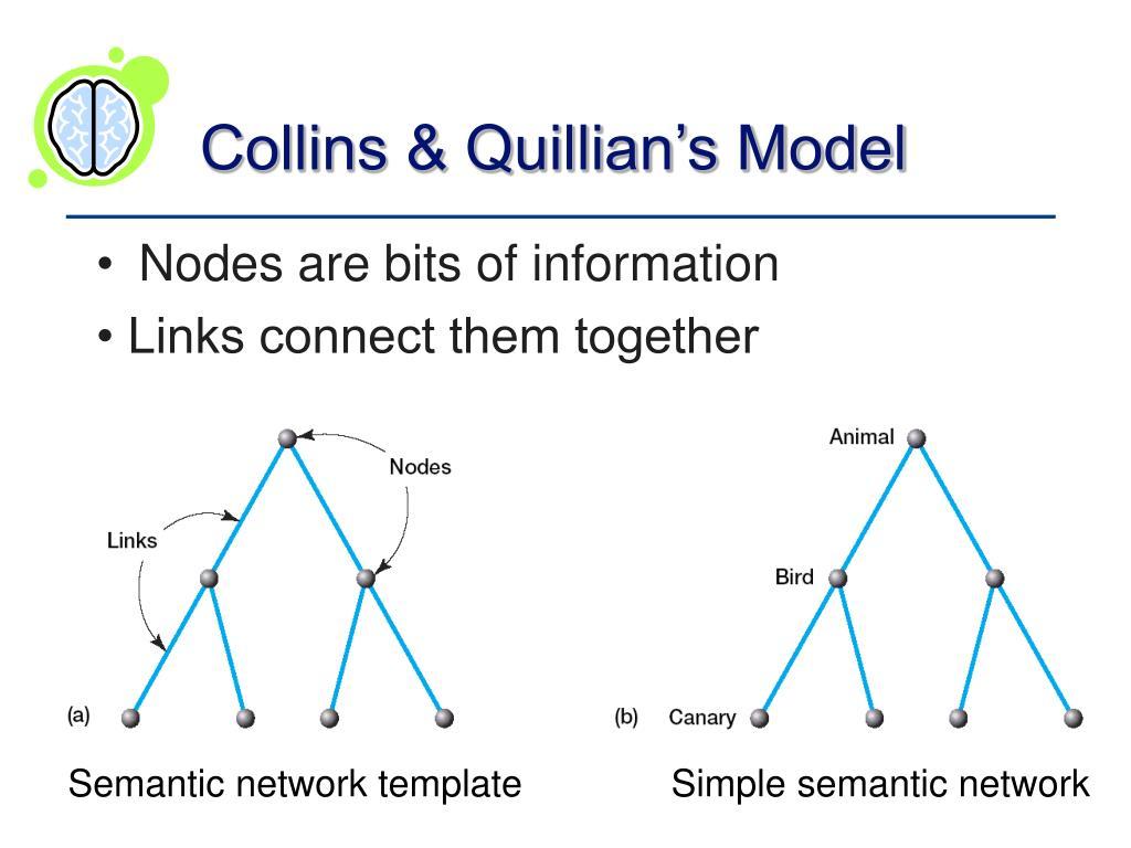 Collins & Quillian's Model