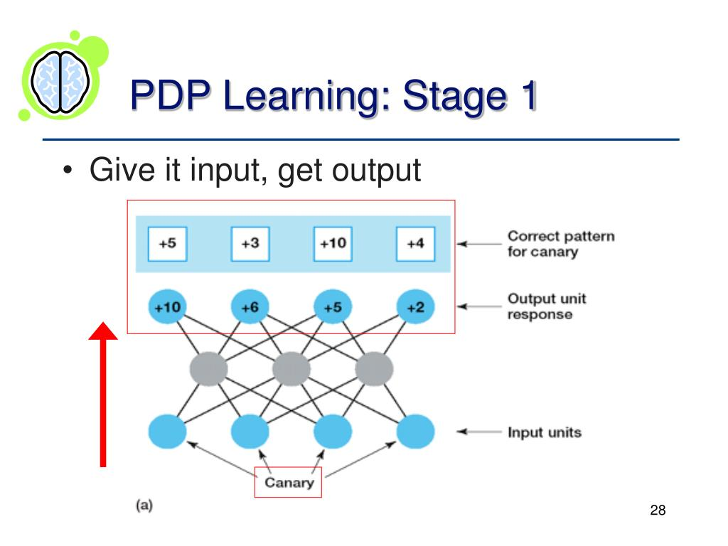 PDP Learning: Stage 1
