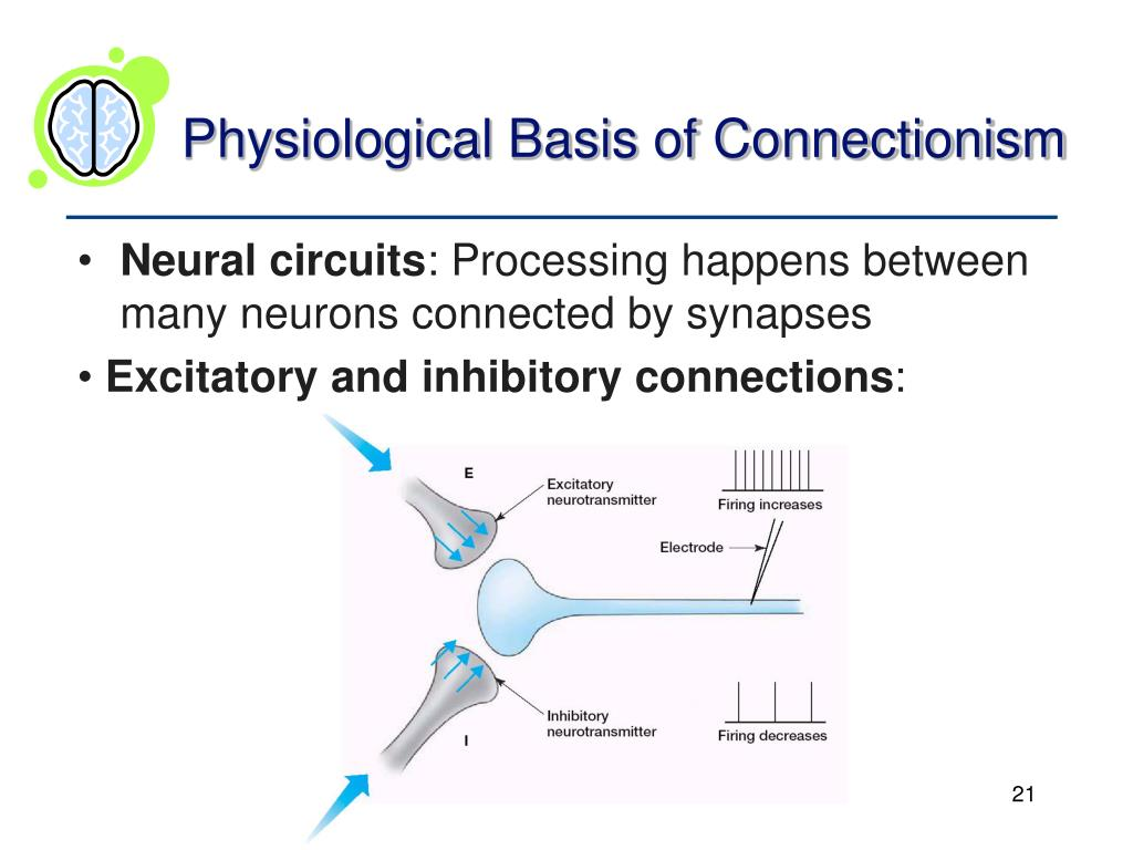 Physiological Basis of Connectionism