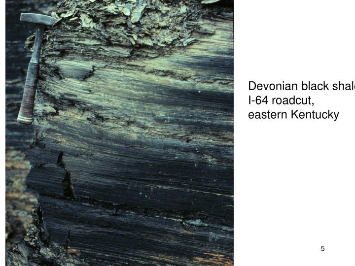 Devonian black shale
