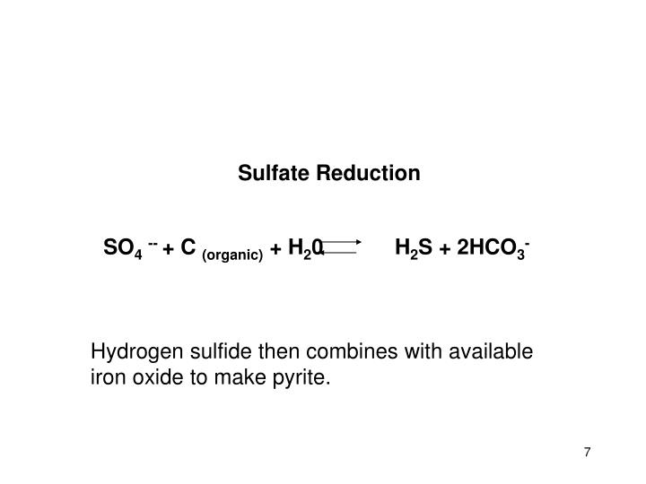 Sulfate Reduction