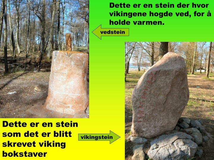 Dette er en stein der hvor vikingene hogde ved, for å holde varmen.