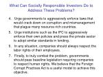 what can socially responsible investors do to address these problems10