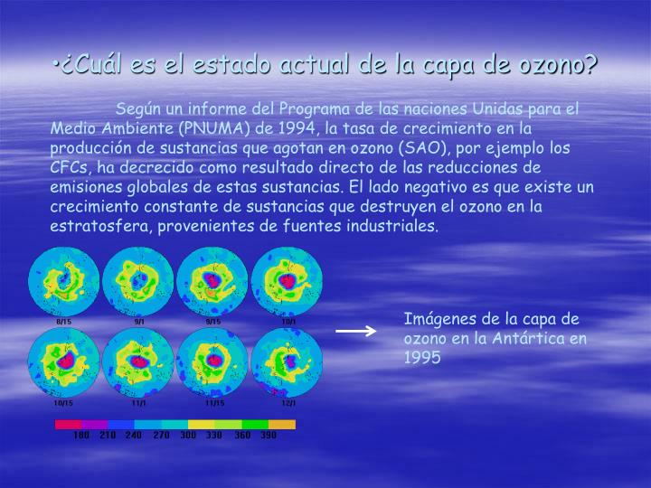 ¿Cuál es el estado actual de la capa de ozono?