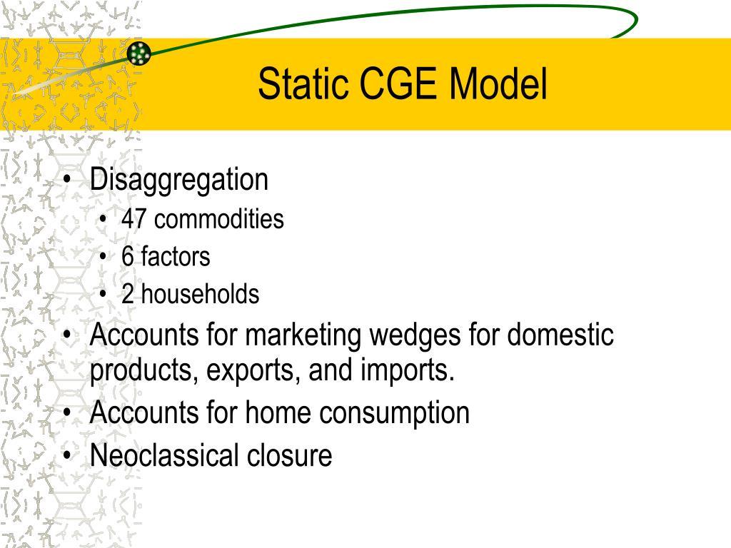 Static CGE Model