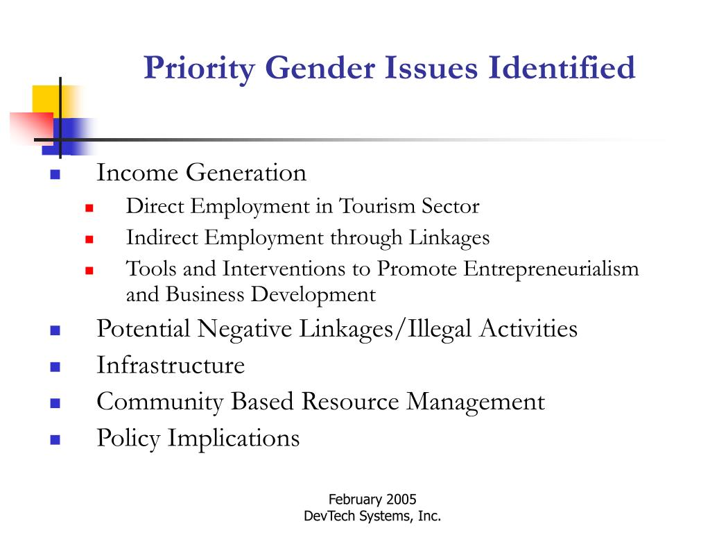 Priority Gender Issues Identified