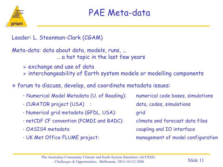 PAE Meta-data