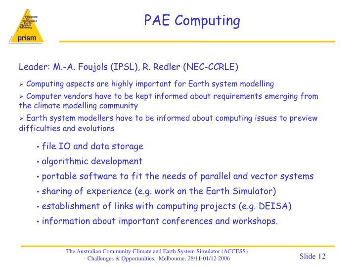 PAE Computing