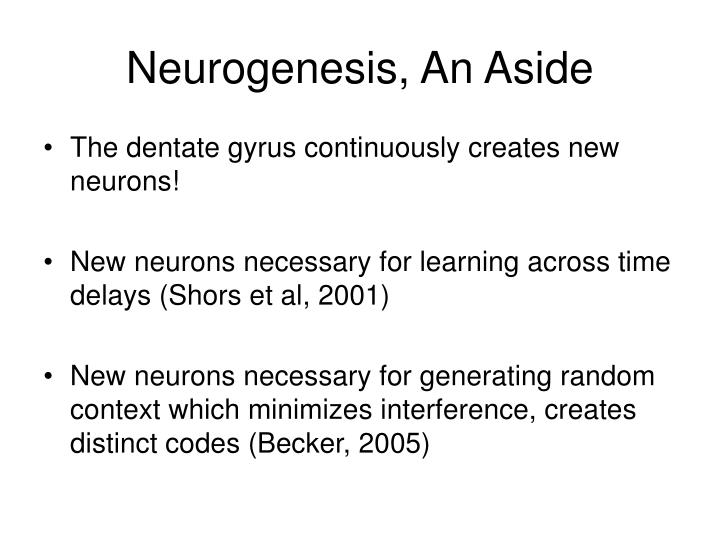 Neurogenesis, An Aside