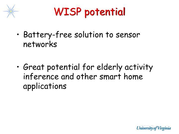 WISP potential