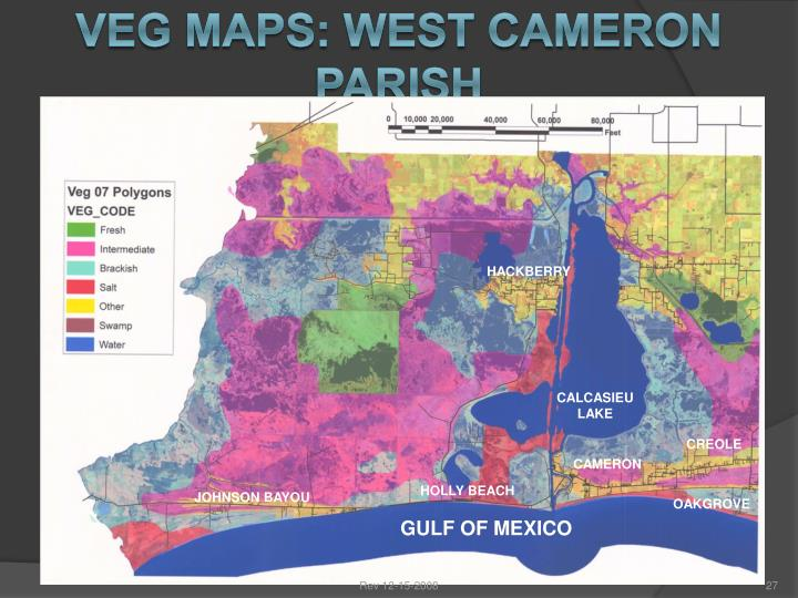 VEG MAPS: WEST CAMERON PARISH