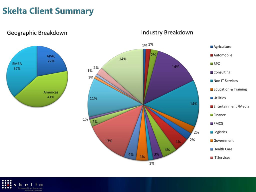 Skelta Client Summary