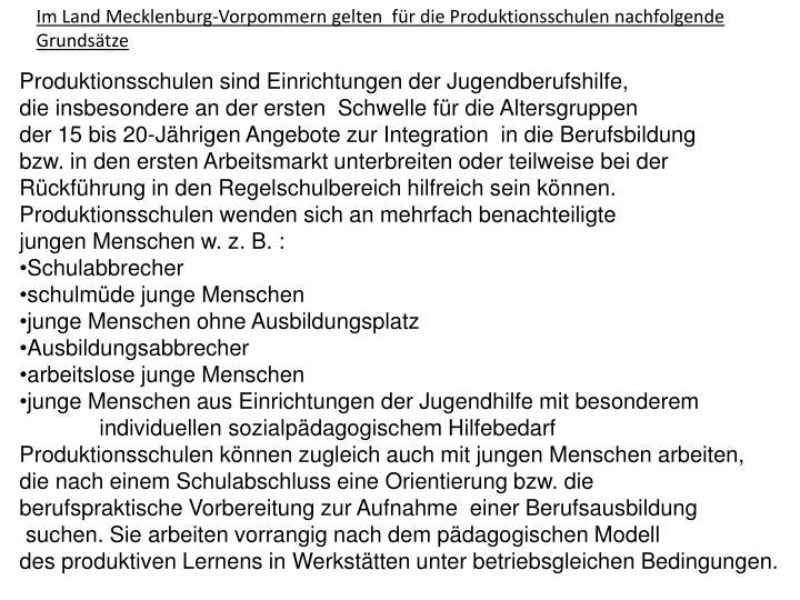 Im Land Mecklenburg-Vorpommern gelten  für die Produktionsschulen nachfolgende Grundsätze