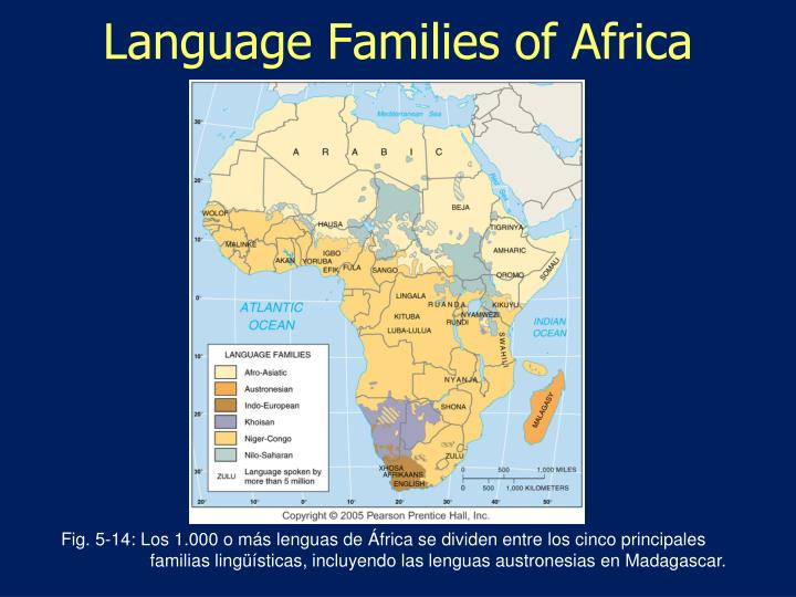 Language Families of Africa