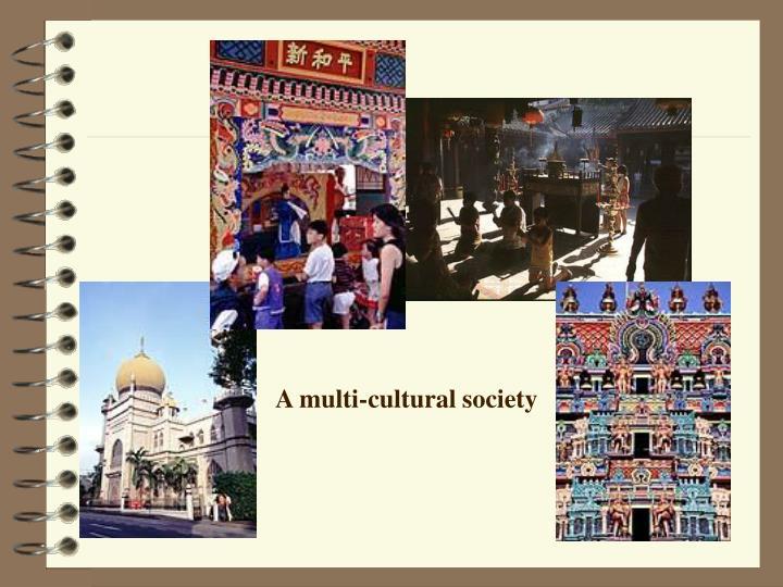 A multi-cultural society