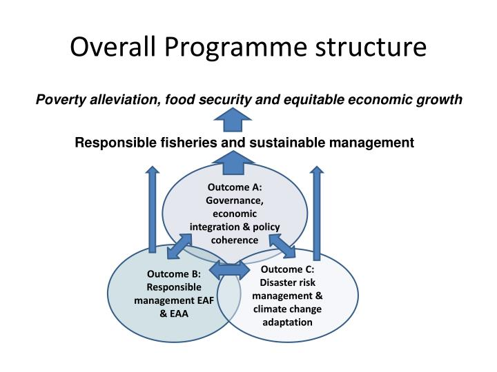 Overall Programme structure