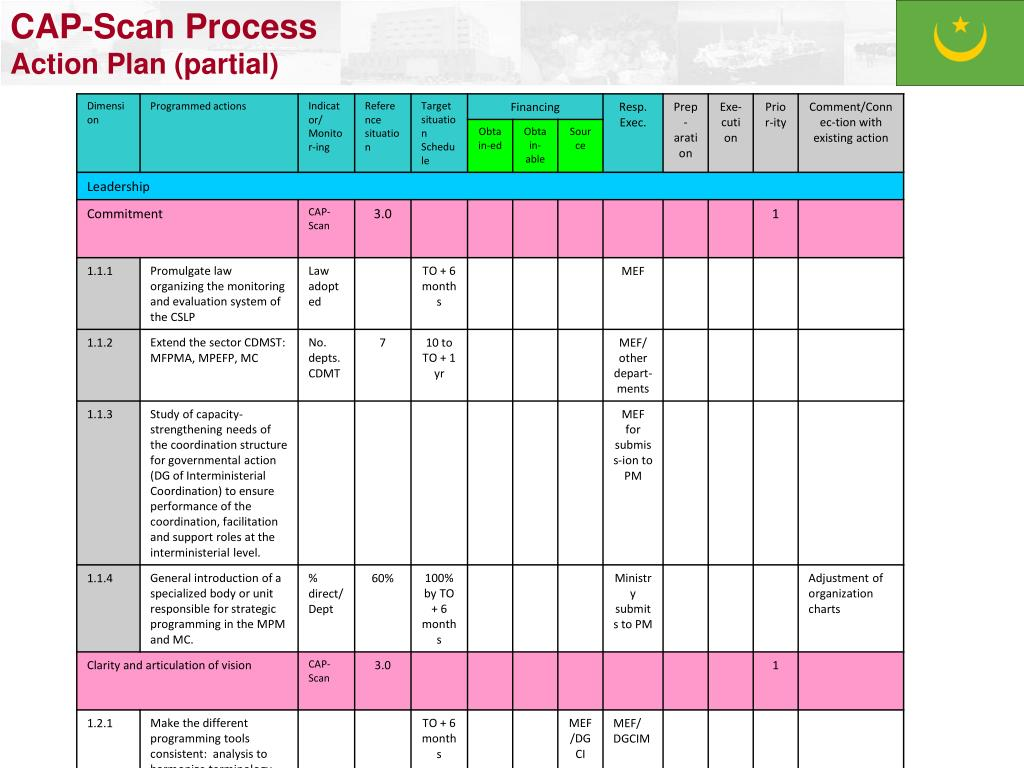 CAP-Scan Process