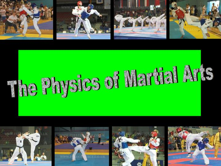 The Physics of Martial Arts