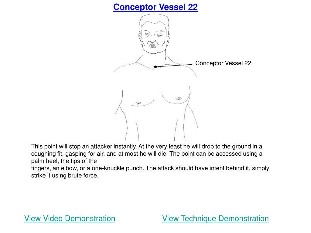 Conceptor Vessel 22