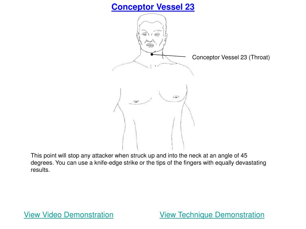 Conceptor Vessel 23