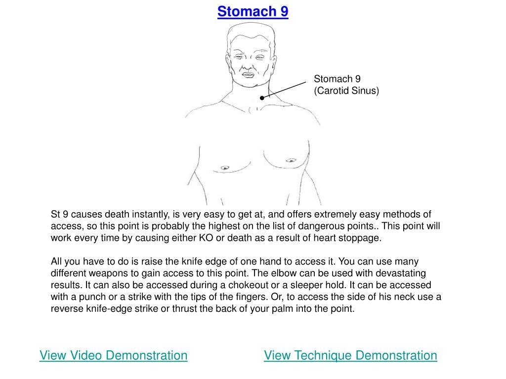 Stomach 9