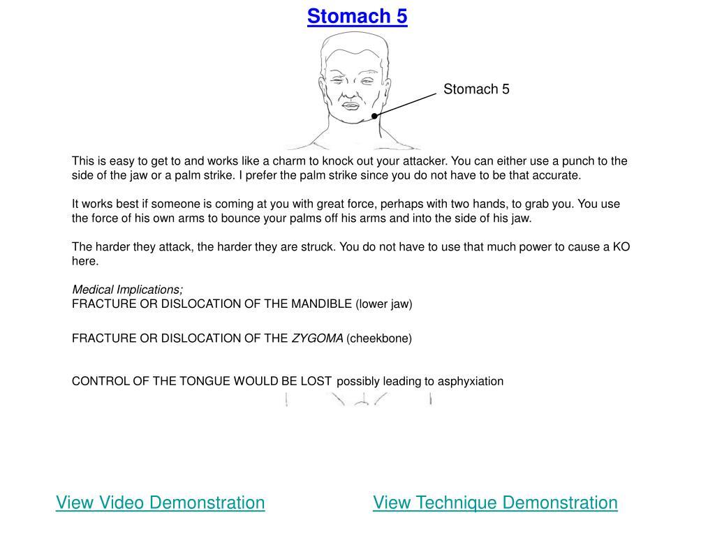 Stomach 5