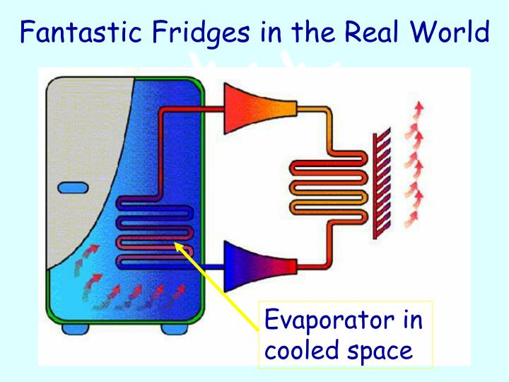 Fantastic Fridges in the Real World