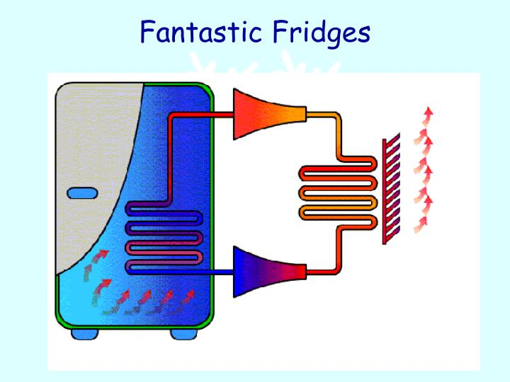 Fantastic Fridges
