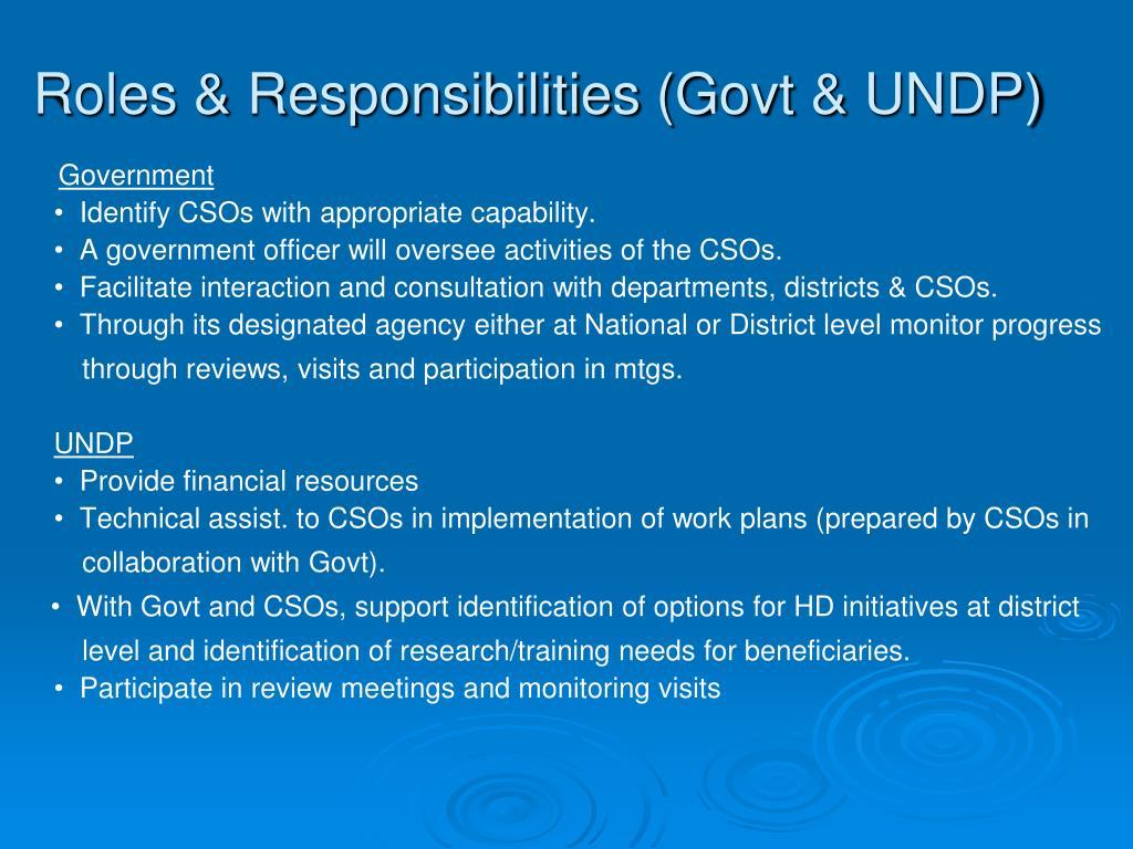 Roles & Responsibilities (