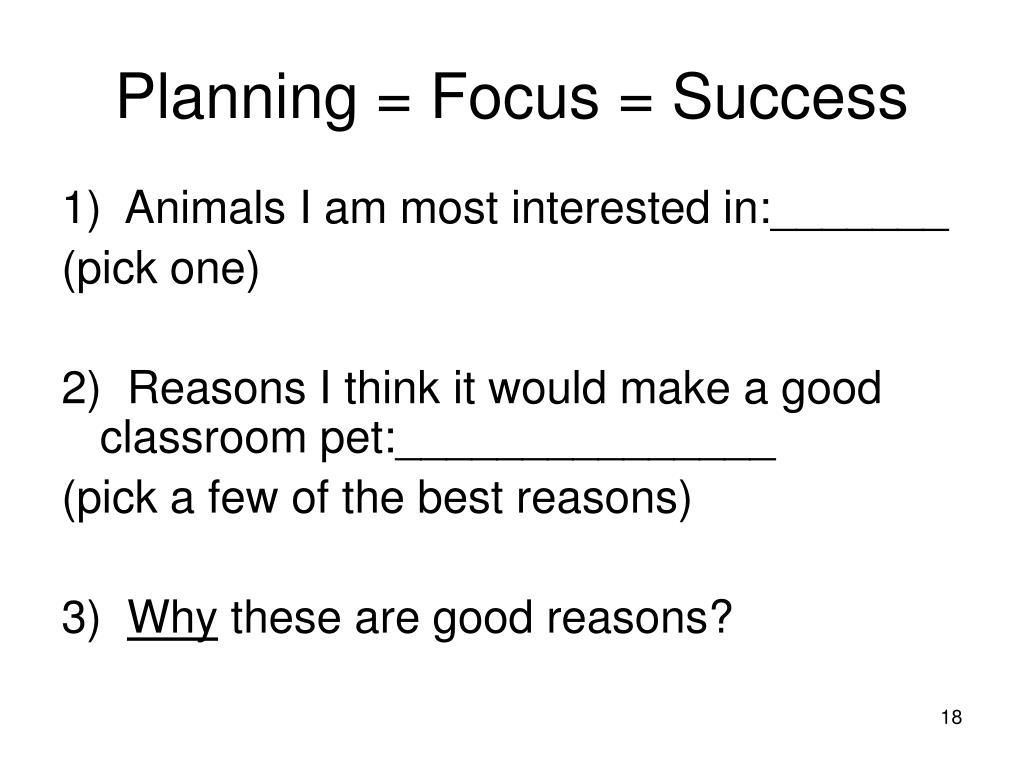 Planning = Focus = Success