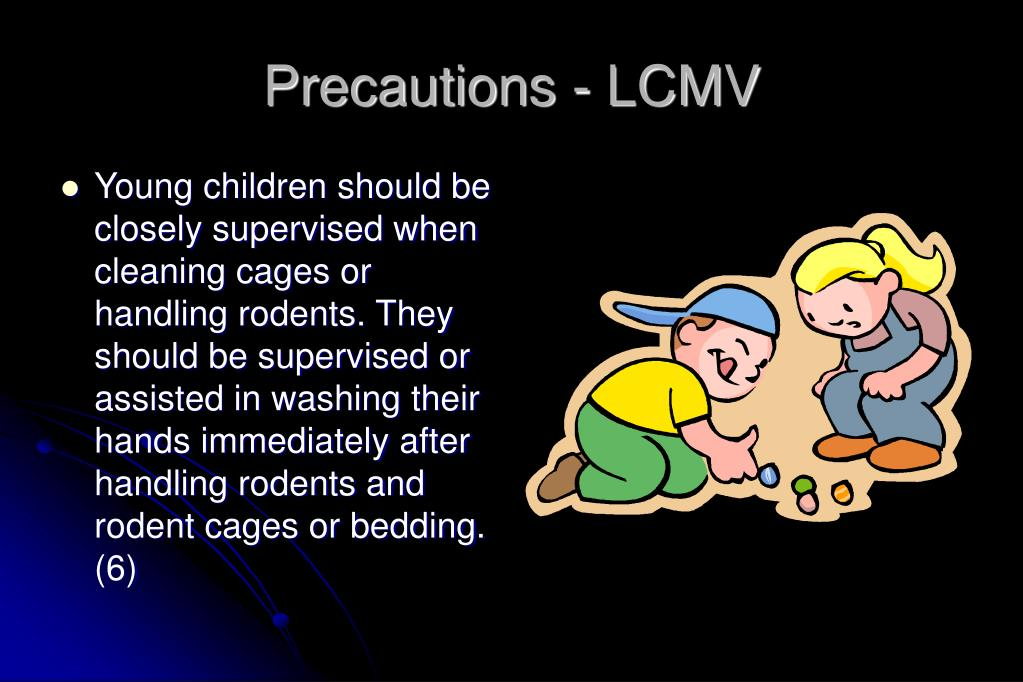 Precautions - LCMV
