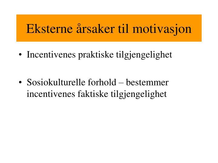 Eksterne årsaker til motivasjon