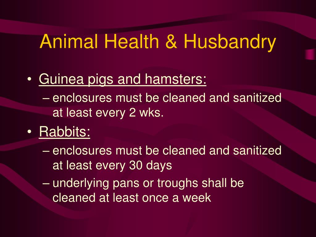 Animal Health & Husbandry