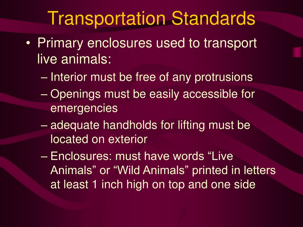 Transportation Standards