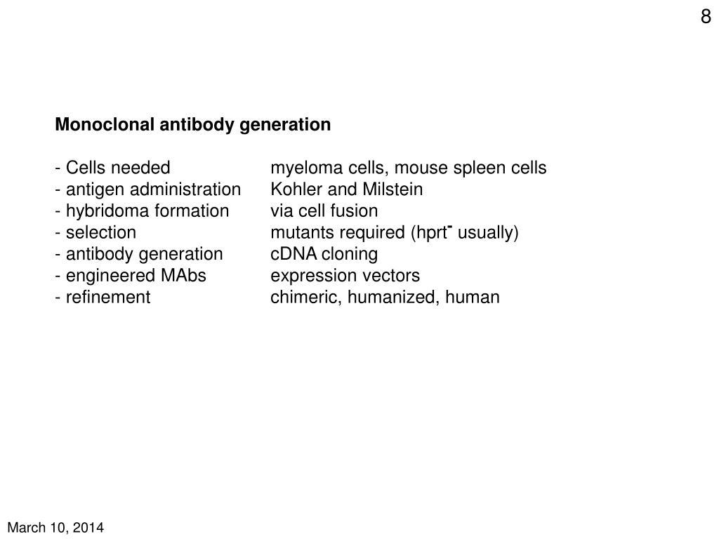 Monoclonal antibody generation